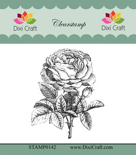 Dixi Craft Clear Stamp-Botanical Collection/Nr.8