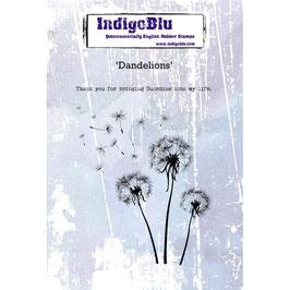 IndigoBlu-Stempel/Dandelions