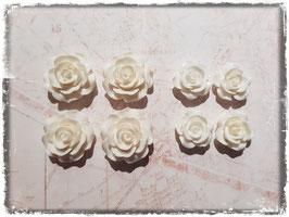 Harzblumen - weiss