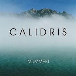 HOLGER MUMMERT Calidris CD / Guitar Music