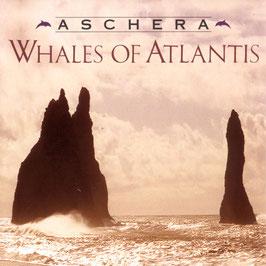 ASCHERA Whales Of Atlantis CD / Guitar Music