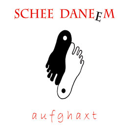 SCHEE DANEEM aufghaxt CD / Mundart-Blues