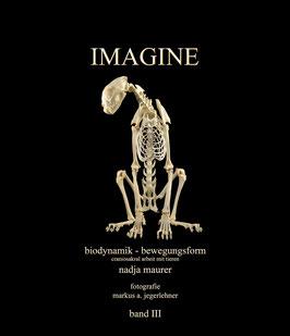 IMAGINE band 3: bewegung & form: biodynamik - craniosakral arbeit mit tieren (Deutsch)