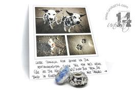 Eine handgedrehte Glasperlen mit Asche und Lederband - Fellfarben des Tieres