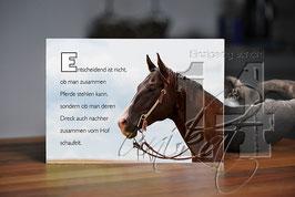 "Shabby Chic Schild - ""Pferd 1"""