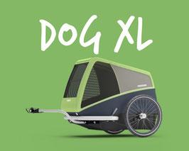 DOG XL