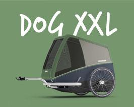 DOG XXL
