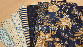ST. LOUIS COLLECTION LOTE 7 FAT QUARTERS
