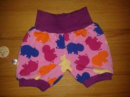 Shorts Nilpferd