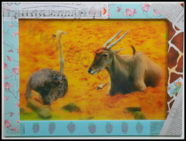Afrika Serie: Antilope mit Strauß im fantasievollen Rahmen