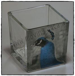Glas-Windlicht S mit Pfauenkopf