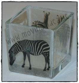Windlicht mit Zebras