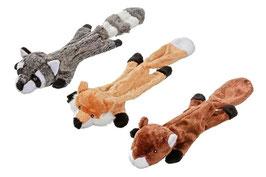 Waschbär, Eichhörnchen, Fuchs
