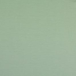 Baumwolljersey schilfgrün