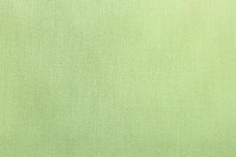 Baumwoll Fahnentuch mintgrün