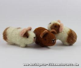 IHR Meerschweinchen als Miniatur