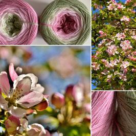 MUTTERTAG 2020 Apfelblüte 900m LL Limitierte Edition!