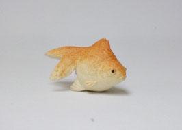 金魚(赤と黒)