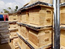 Spende eines Bienenstocks