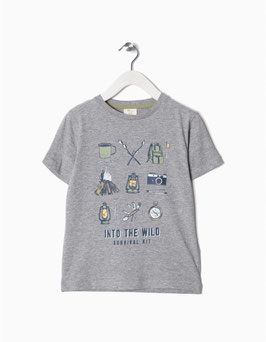 Camiseta Niño Gris Zippy