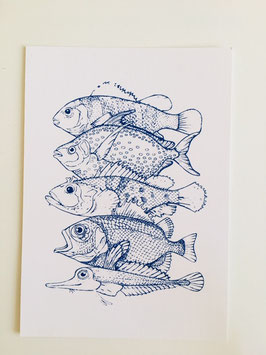 """Postkarte """"Fische"""""""