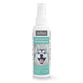 Dentalspray für Hunde - Denta Clean & Care