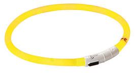 Maxi Safe LED Halsband