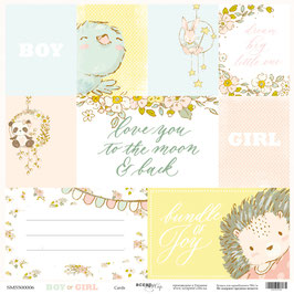 PSB-64 hoja tarjetas Boy or Girl 30x30 cm