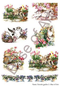 PA4-108 Conejos