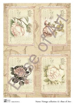 PA4-153 Los flores