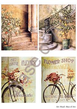 PA4-125 La bicicleta