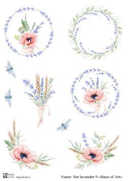 Set lavender 9