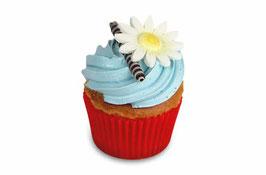 Cupcake blue