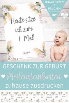 24 MEILENSTEIN-KARTEN: Pamas-Love