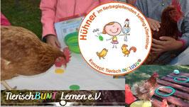Trainer Hühner und Hähne in der tierbegleitenden Förderung und Setting + Tiertraining  - Zertifikatslehrgang AAA/AAE/AAT