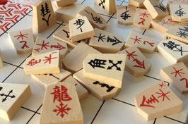 Kombination: Spielsteine mit Pfeilen PLUS (verschiedene) Holzbretter