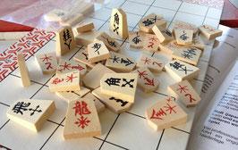 Shogi-Set Lernhilfen mit Pfeilen