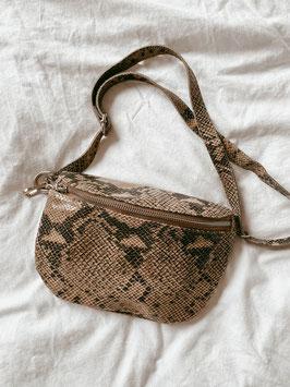 Handbag Snake