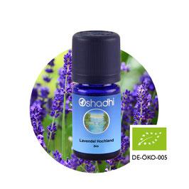 Lavendel Hochland BIO