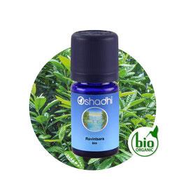 Ravintsara BIO - 5 ml
