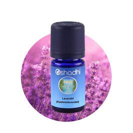 Lavendel (Kaschmirlavendel) - 5 ml