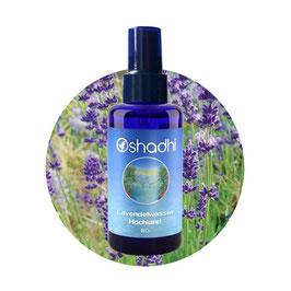 Lavendel Hochland Hydrolat Bio - 100 ml
