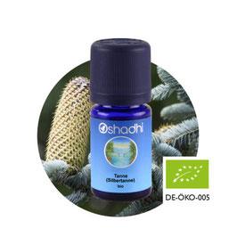 Tanne (Silbertanne) BIO - 5 ml