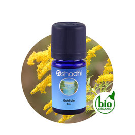Goldrute BIO - 5 ml
