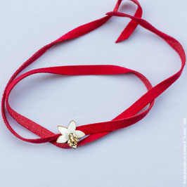 La fleur bicolore Apa Regina