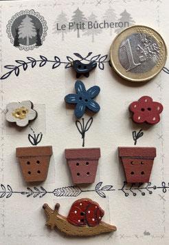 Escargot, fleurs bleue ,blanche, rouge, pots