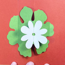 Three Pop-Up Floral Cards: Saturday, May 30, 1pm-3pm CDT