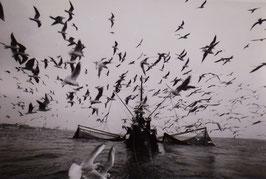 Der letzte Fischer auf der Weser