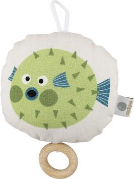 Brummer Kugelfisch, grün