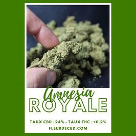 Amnesia ROYAL Fleur de CBD